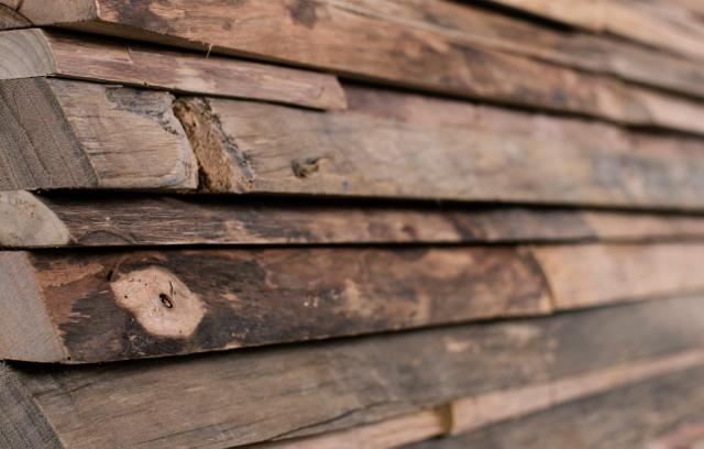 Baumkante Holz Wand Verkleidung