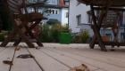 terrasse-holz