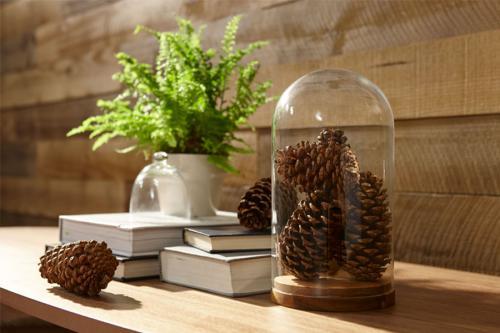 Holz Fichte saegerau
