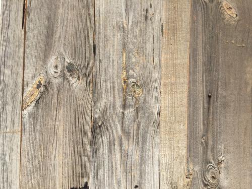 Altholz Wandpaneele sonnenverbrannt grau